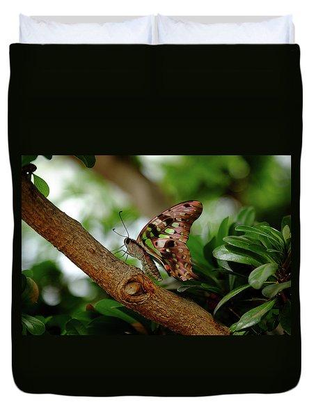 Tailed Jay Duvet Cover