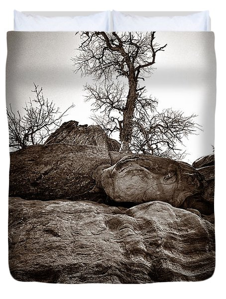 A Barren Perch - Sepia Duvet Cover by Christopher Holmes