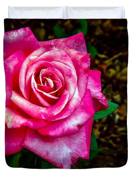 A Bicolor Rose Duvet Cover