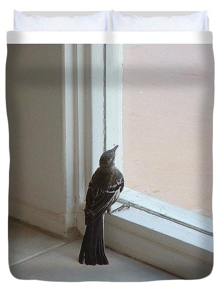 A Bird At A Plate Glass Window Duvet Cover by Stan  Magnan