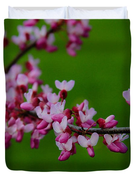 A Branch Of Spring Duvet Cover by Roger Becker