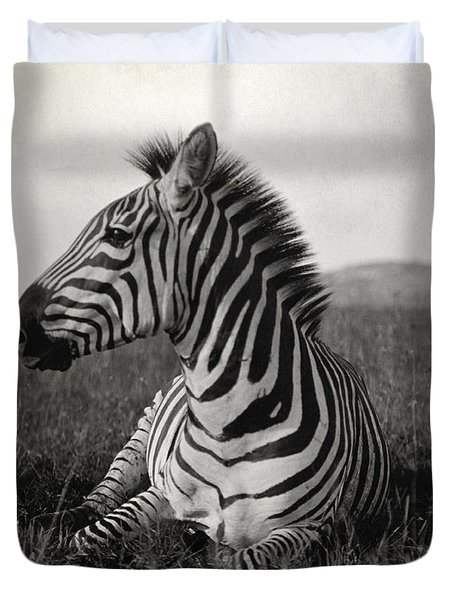 A Burchells Zebra At Rest Duvet Cover