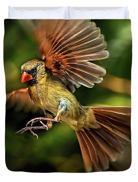 A Cardinal Approaches Duvet Cover