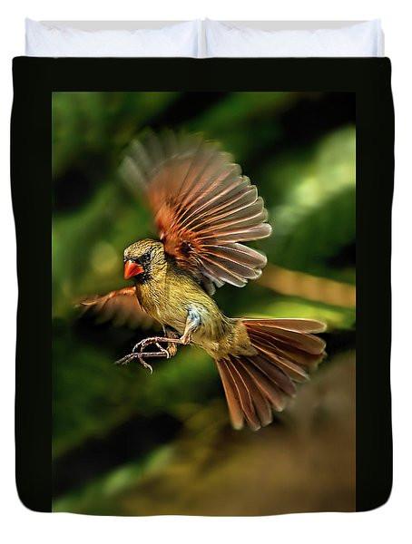 A Cardinal Approaches Duvet Cover