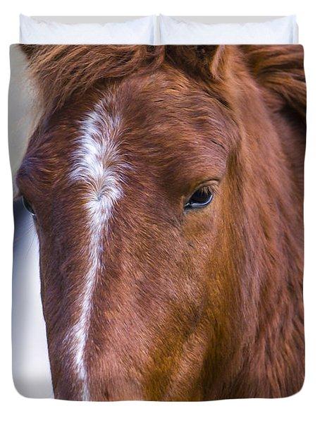 A Chestnut Horse Portrait Duvet Cover