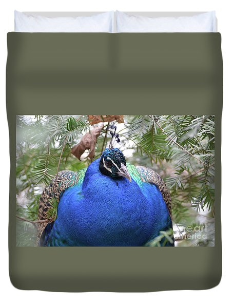 A Close Up Look At A Blue Peafowl Duvet Cover