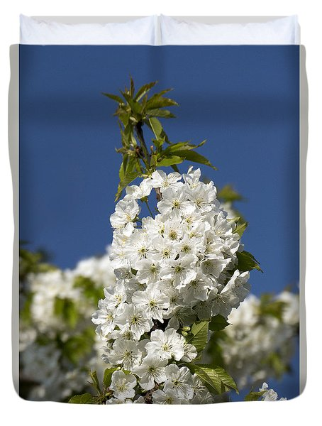 A Cluster Of Cherry Flowers Blossoming In The Springtime Duvet Cover