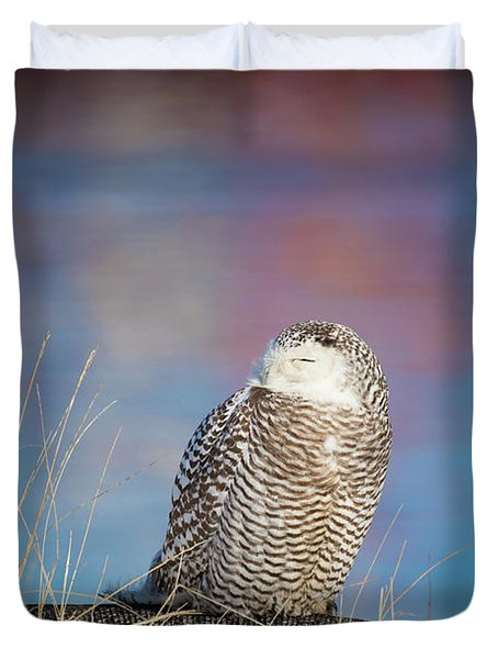 A Colorful Snowy Owl Duvet Cover