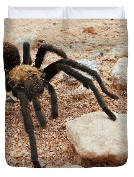 A Costa Rican, Also Known As Desert, Tarantula Duvet Cover