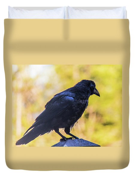Duvet Cover featuring the photograph A Crow Looks Away by Jonny D