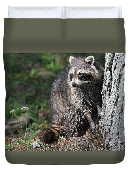 A Curious Raccoon Duvet Cover