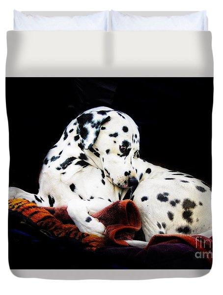 A Dalmatian Prince Duvet Cover by Blair Stuart