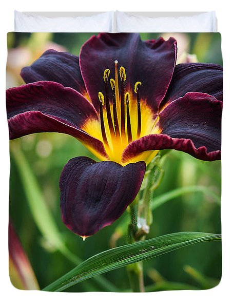 A Dark Purple Tiger Lilly Duvet Cover by B Wayne Mullins