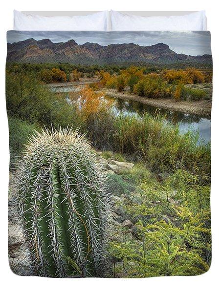 A Desert Oasis  Duvet Cover