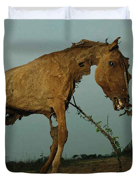 A Desiccated Horse Carcass Propped Duvet Cover