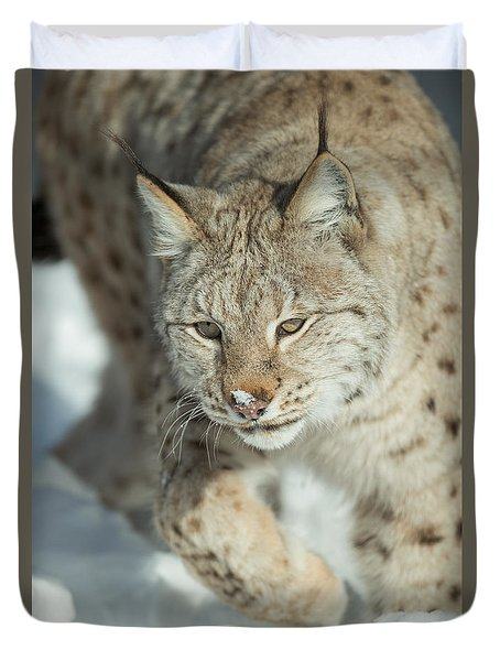 A Eurasian Lynx In Snow Duvet Cover