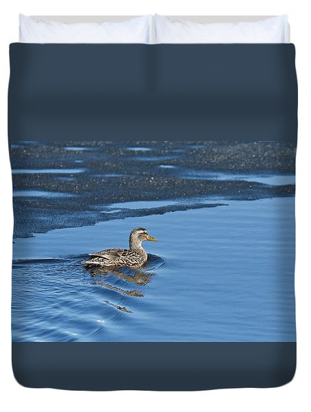 Duvet Cover featuring the photograph A Female Mallard In Thunder Bay by Michael Peychich