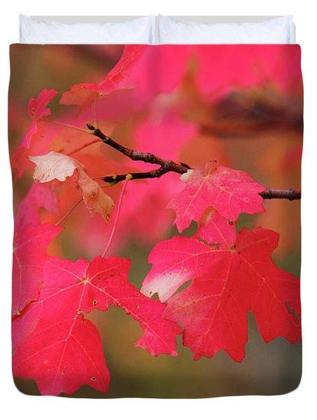 A Flash Of Autumn Duvet Cover