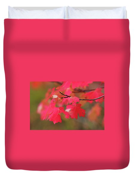 A Flash Of Autumn Duvet Cover