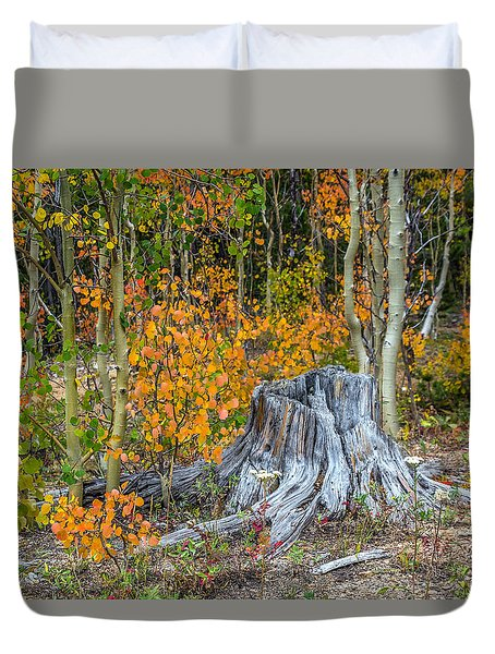 A Forest Of Color Duvet Cover