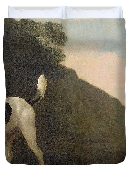 A Foxhound Duvet Cover by George Stubbs