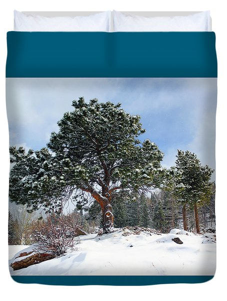 Duvet Cover featuring the photograph A Fresh Blanket Of Snow by Shane Bechler