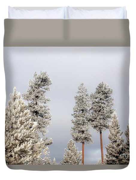 A Frosty Morning 2 Duvet Cover by Janie Johnson