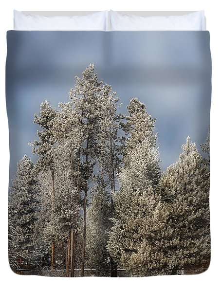 A Frosty Winter Morning Duvet Cover