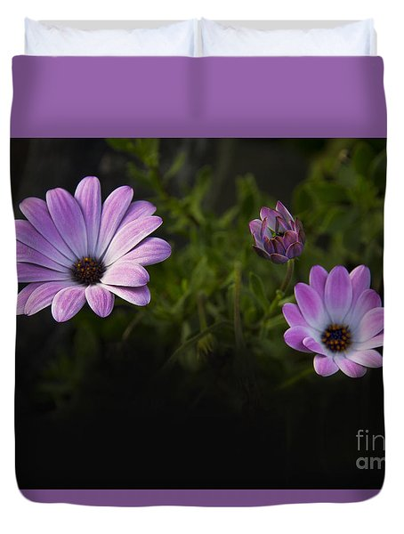 A Garden To Remember II Duvet Cover by Al Bourassa