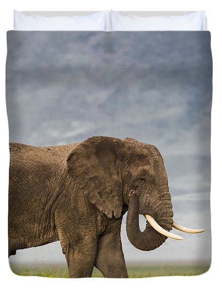 Duvet Cover featuring the photograph A Gentle Giant by Sandra Bronstein