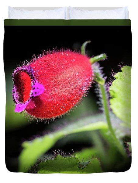A Gesneriad Duvet Cover