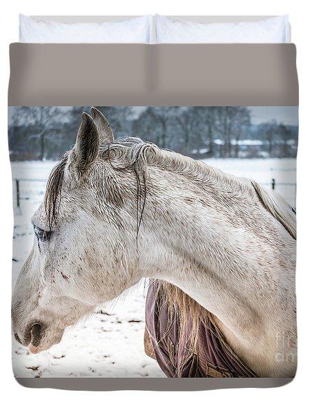 A Girlfriend Of The Horse Amigo Duvet Cover