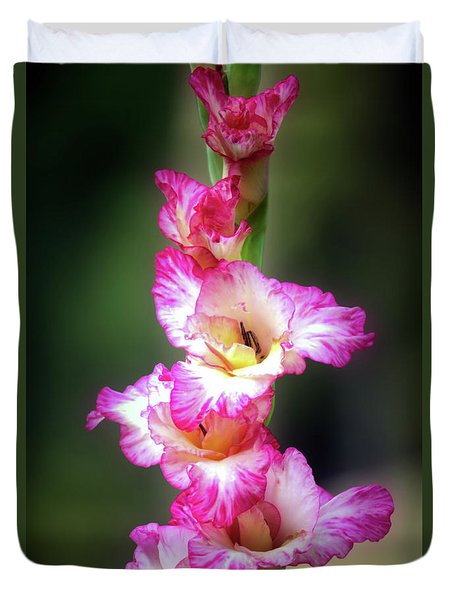 A Gladiolus Duvet Cover