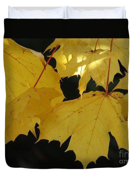 A Glimpse Of Light Duvet Cover by Kim Tran