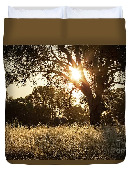 Duvet Cover featuring the photograph A Golden Afternoon by Linda Lees