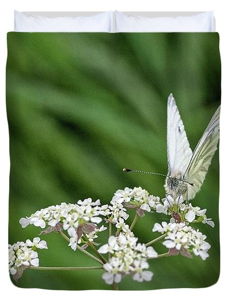 A Green-veined White (pieris Napi) Duvet Cover by John Edwards