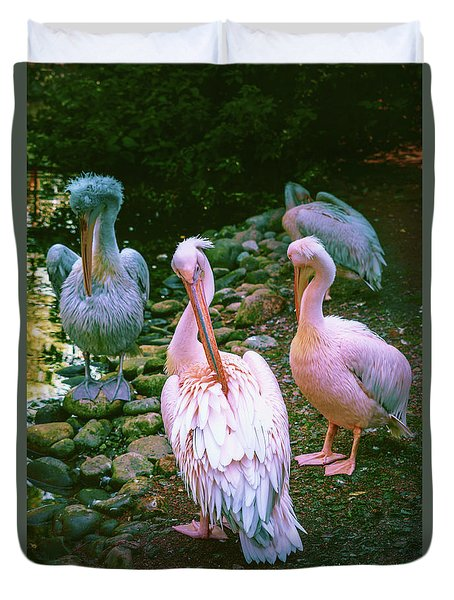 a group of swans near the pond on a Sunny summer day Duvet Cover
