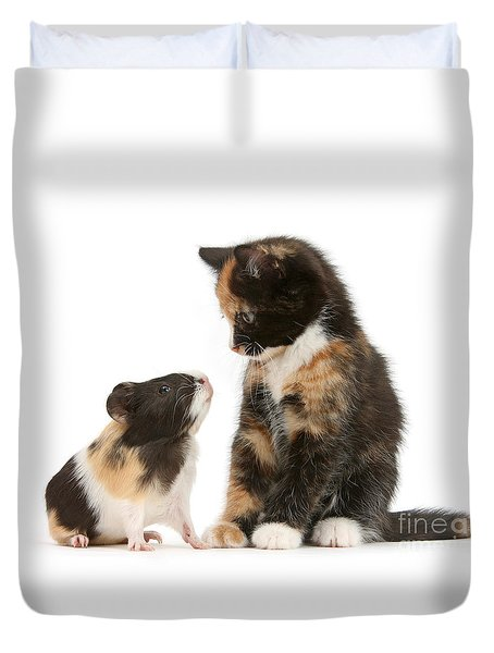 A Guinea For Your Thoughts Duvet Cover