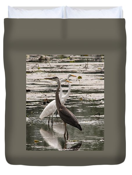 A Heron And Two Egrets Duvet Cover