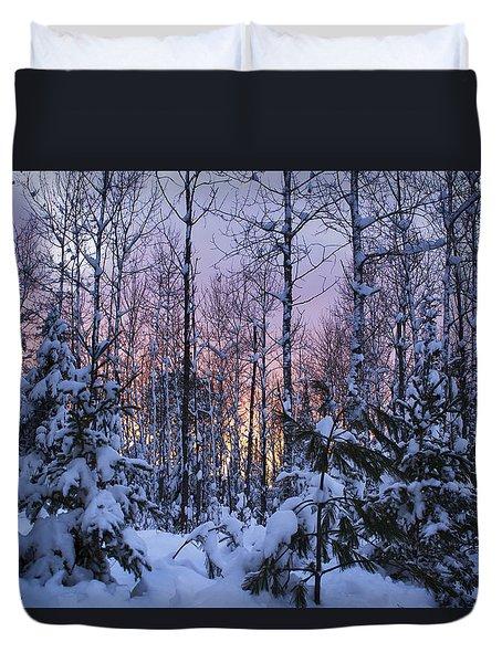 A Hidden Trail Duvet Cover by Dan Hefle