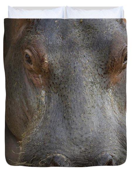 A Hippopotamus At The Sedgwick County Duvet Cover by Joel Sartore