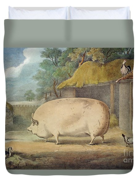 A Leicester Sow Duvet Cover