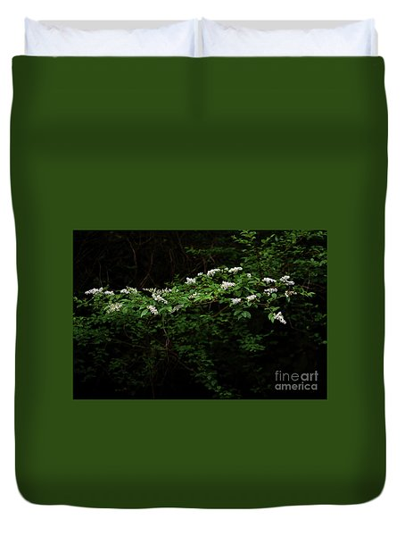 Duvet Cover featuring the photograph A Light In The Darkness by Skip Willits