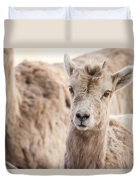Duvet Cover featuring the photograph A Little Lamb Cuteness by Yeates Photography