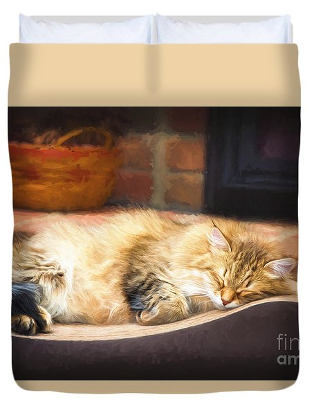 A Long Winter's Nap Duvet Cover