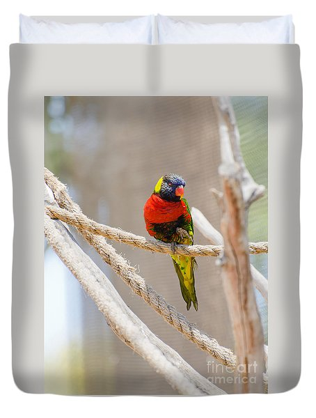 Duvet Cover featuring the photograph A Lorikeet From The Rainforest by MaryJane Armstrong