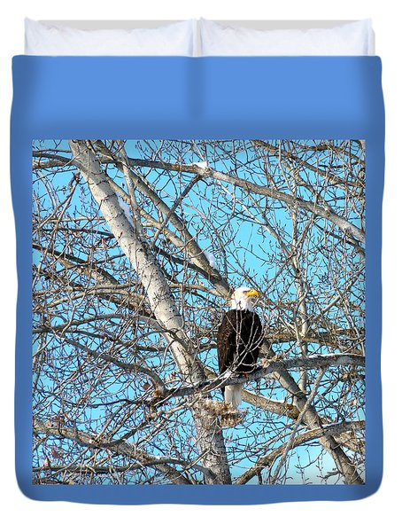A Majestic Bald Eagle Duvet Cover by Will Borden