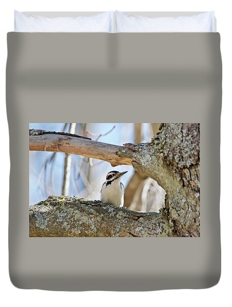 Duvet Cover featuring the photograph A Male Downey Woodpecker  1111 by Michael Peychich