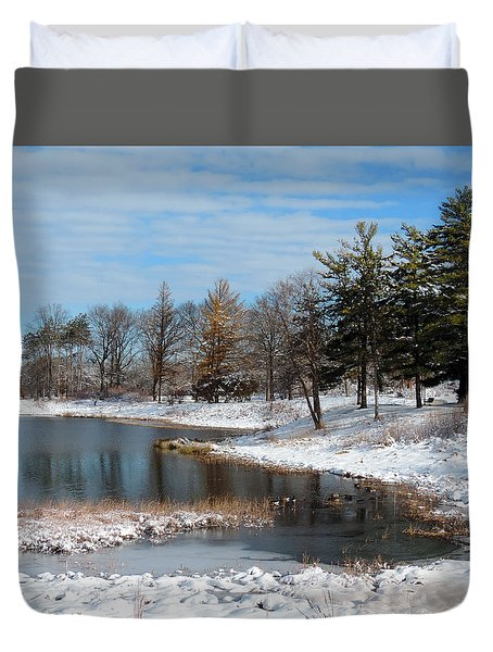 A Mild Winter Morning Duvet Cover by Teresa Schomig