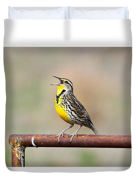 A Morning Song Duvet Cover by Michael Morse